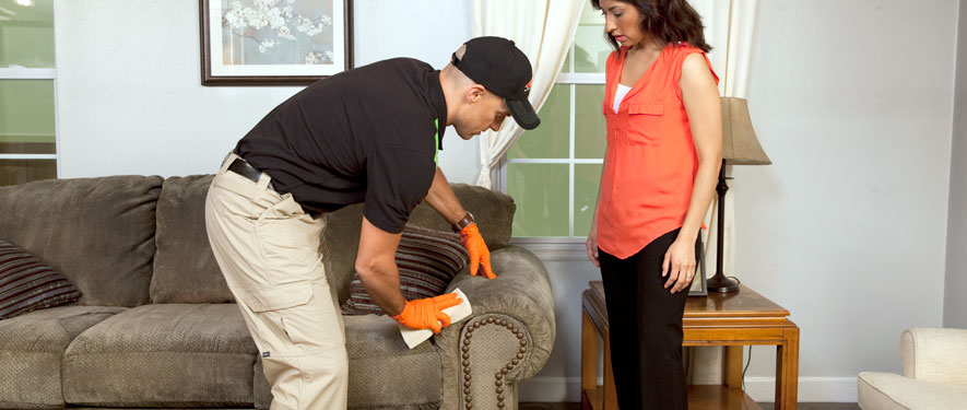 Beachwood, OH carpet upholstery cleaning